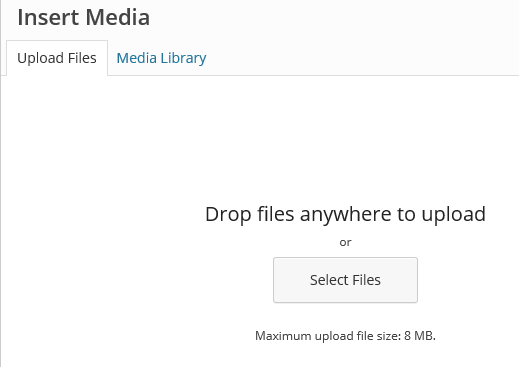 Insert Media Drop Files